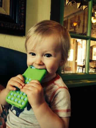 Chewing on Grandma's phone