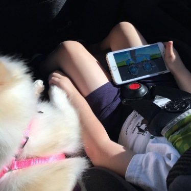 Preoccupied in the car before we got a minivan with a DVD player ;)